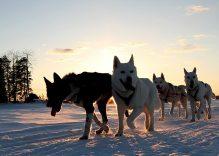 Vuokatti, avventura finlandese